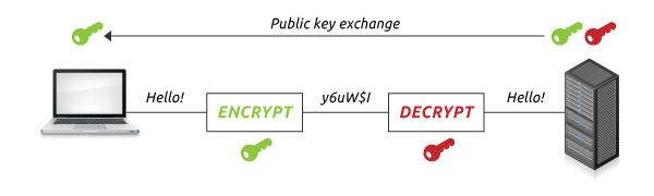 Secure Server-Client Communication via HTTPS